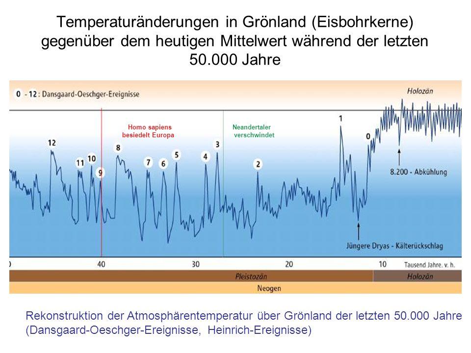 Temperaturänderungen in Grönland (Eisbohrkerne) gegenüber dem heutigen Mittelwert während der letzten 50.000 Jahre Homo sapiens besiedelt Europa Neand