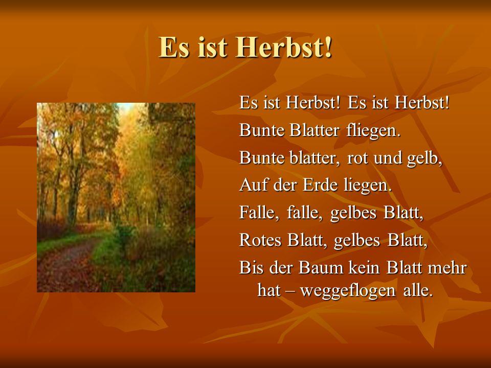 Es ist Herbst! Es ist Herbst! Es ist Herbst! Bunte Blatter fliegen. Bunte blatter, rot und gelb, Auf der Erde liegen. Falle, falle, gelbes Blatt, Rote