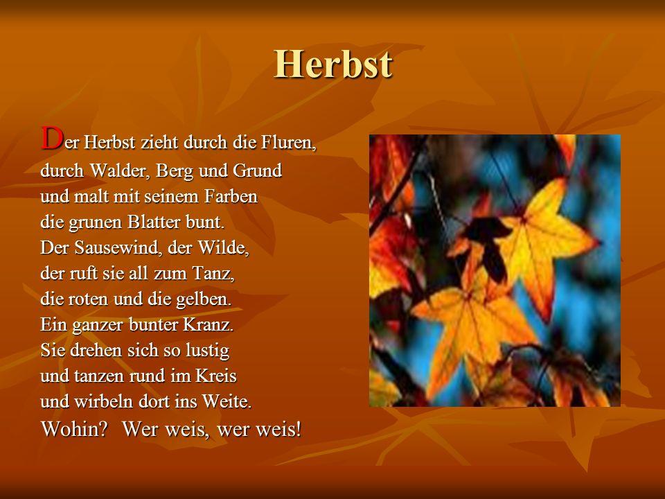 Herbst D er Herbst zieht durch die Fluren, durch Walder, Berg und Grund und malt mit seinem Farben die grunen Blatter bunt. Der Sausewind, der Wilde,