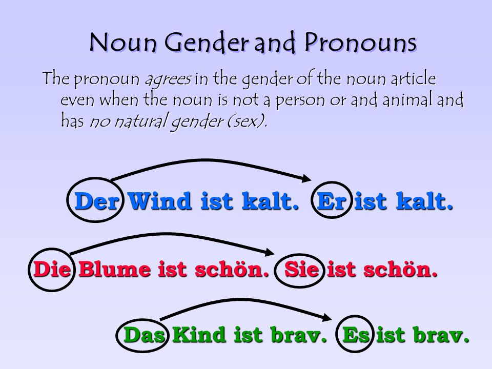 Noun Gender and Pronouns The gender of a noun (der, die, das) determines which pronoun will be used in reference to that noun.