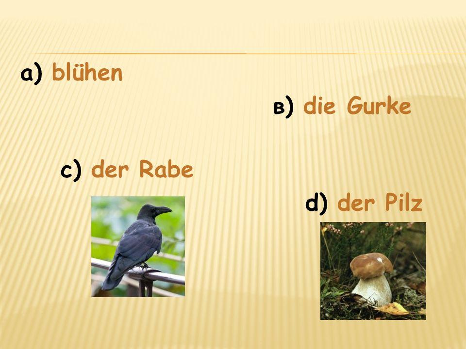 а) blühen в) die Gurke с) der Rabe d) der Pilz