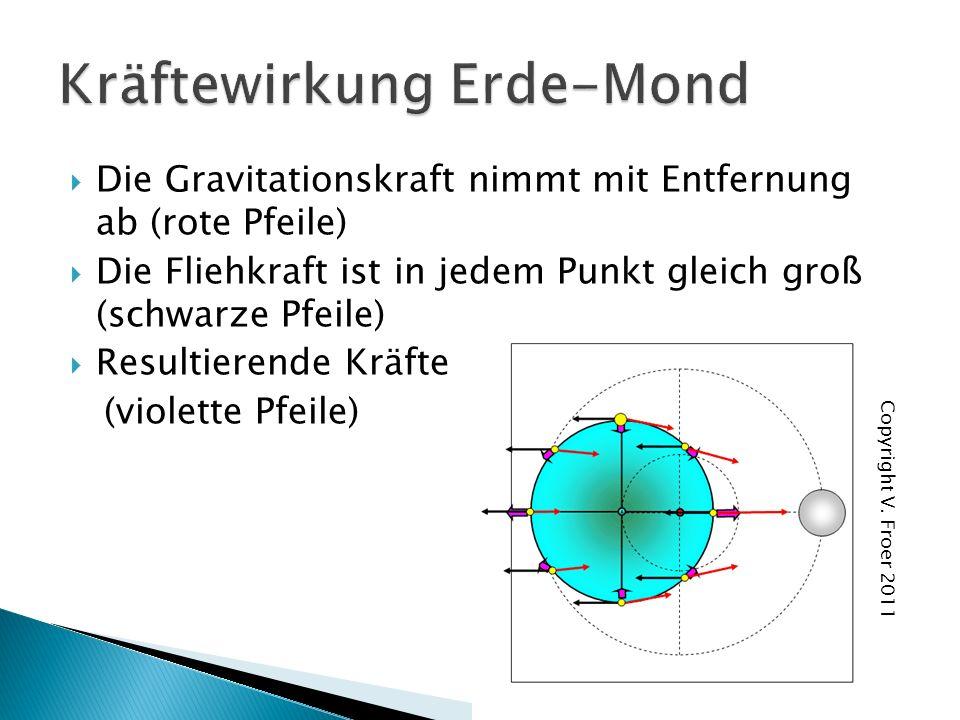 Die Gravitationskraft nimmt mit Entfernung ab (rote Pfeile) Die Fliehkraft ist in jedem Punkt gleich groß (schwarze Pfeile) Resultierende Kräfte (violette Pfeile) Copyright V.