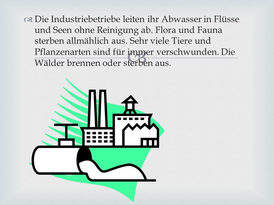 Die Industriebetriebe leiten ihr Abwasser in Flüsse und Seen ohne Reinigung ab. Flora und Fauna sterben allmählich aus. Sehr viele Tiere und Pflanzena