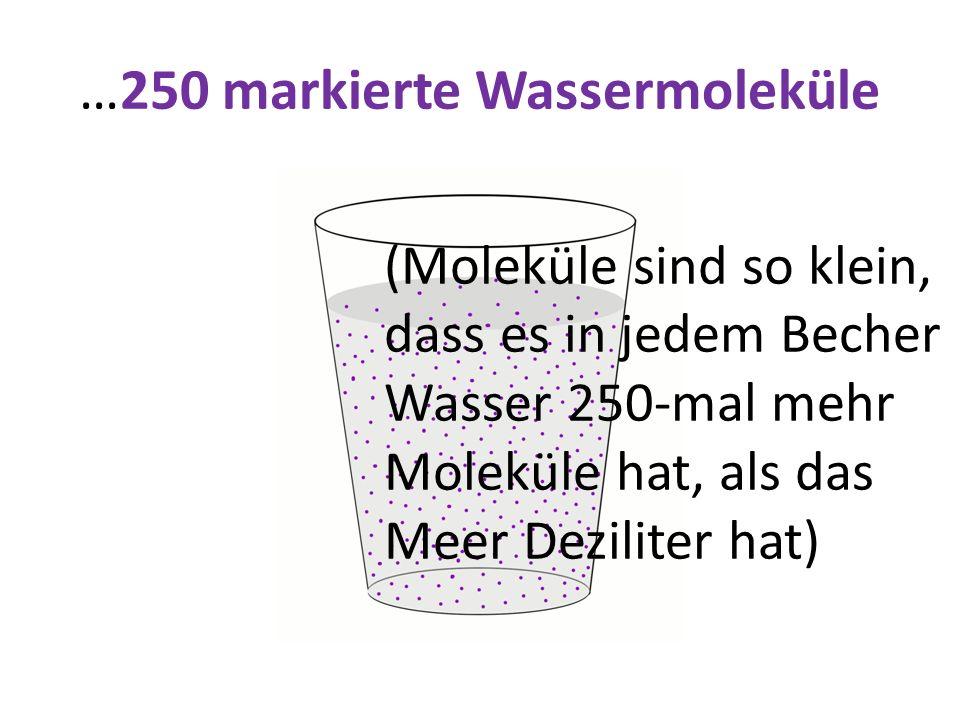 …250 markierte Wassermoleküle (Moleküle sind so klein, dass es in jedem Becher Wasser 250-mal mehr Moleküle hat, als das Meer Deziliter hat)