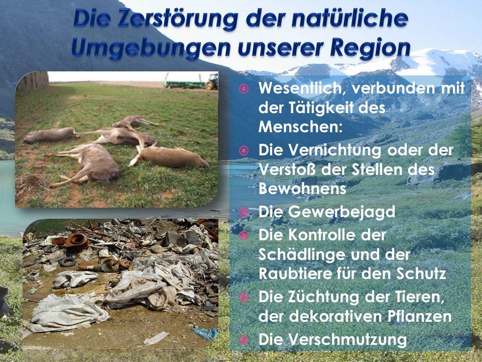 Wesentlich, verbunden mit der Tätigkeit des Menschen: Die Vernichtung oder der Verstoß der Stellen des Bewohnens Die Gewerbejagd Die Kontrolle der Schädlinge und der Raubtiere für den Schutz Die Züchtung der Tieren, der dekorativen Pflanzen Die Verschmutzung