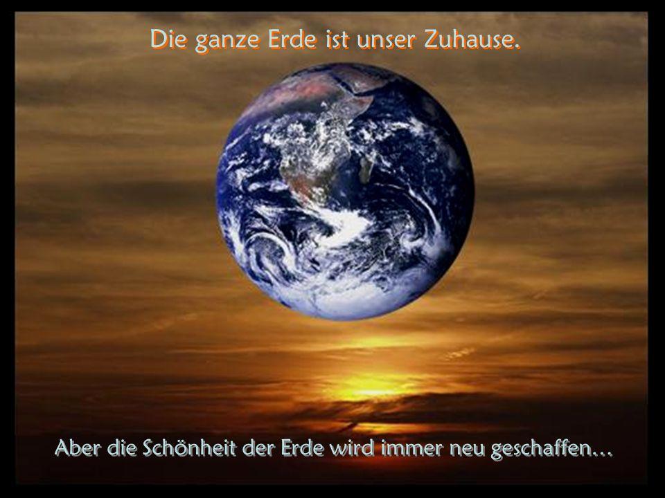 Bewahren wir es und zerstören es nicht… Bevor die Wüste explodiert und verbrennt... Hinterlassen wir unseren Kindern ein gutes Erbe…