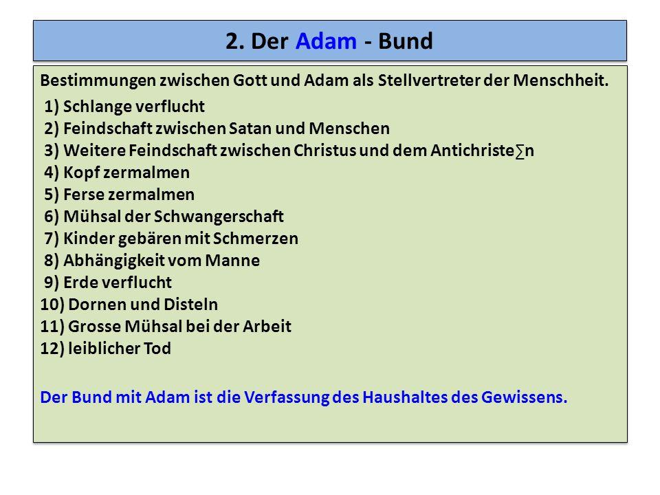 2. Der Adam - Bund Bestimmungen zwischen Gott und Adam als Stellvertreter der Menschheit. 1) Schlange verflucht 2) Feindschaft zwischen Satan und Mens