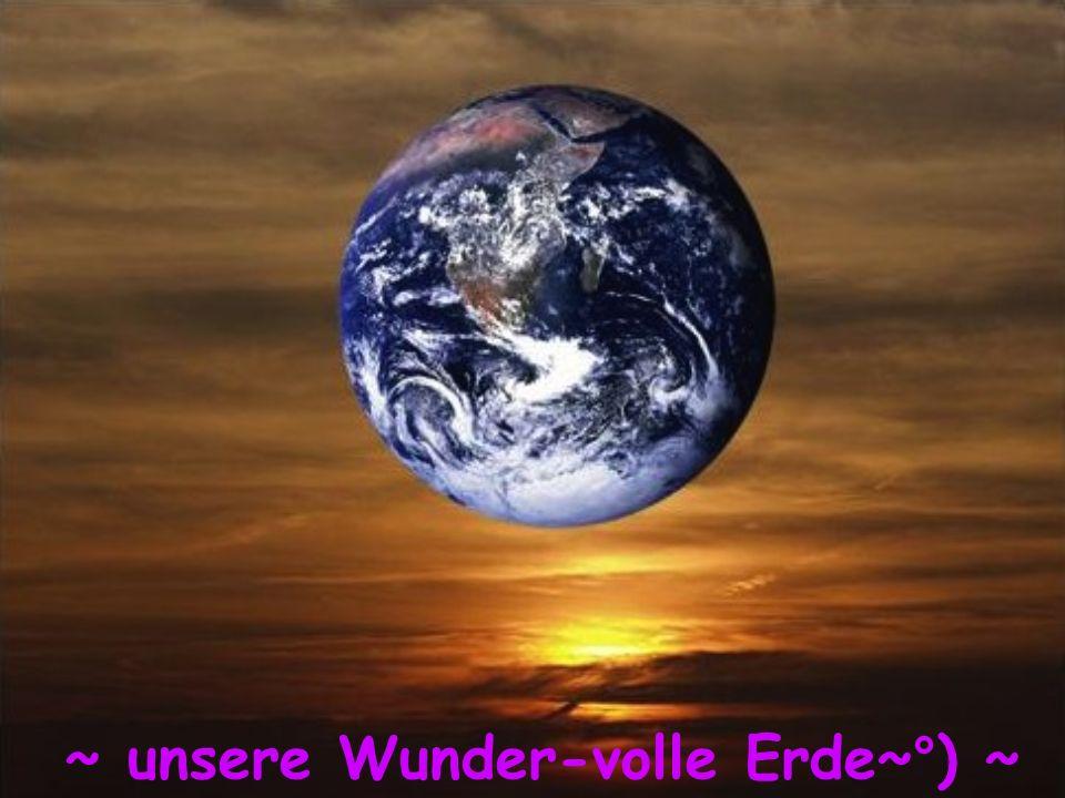 ~ unsere Wunder-volle Erde~°) ~