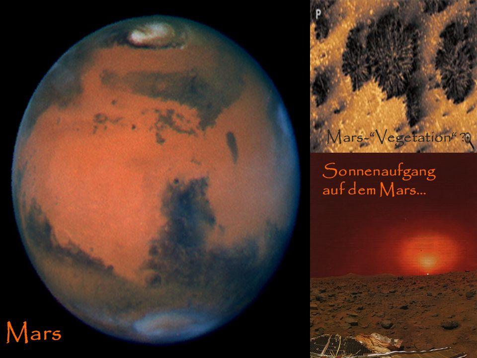 MarsMars Oberfläche Sonnenaufgang Mars Sonnenaufgang auf dem Mars… Mars-Vegetation ?