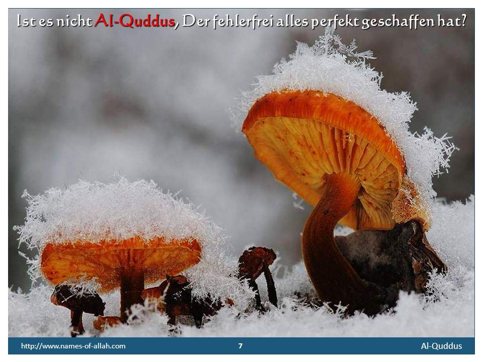 7 Al-Quddus 7 http://www.names-of-allah.com Ist es nicht Al-Quddus, Der fehlerfrei alles perfekt geschaffen hat?