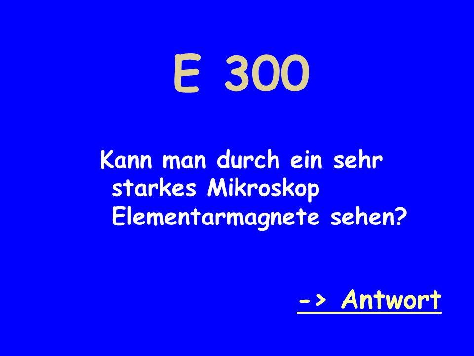 E 300 Kann man durch ein sehr starkes Mikroskop Elementarmagnete sehen? -> Antwort