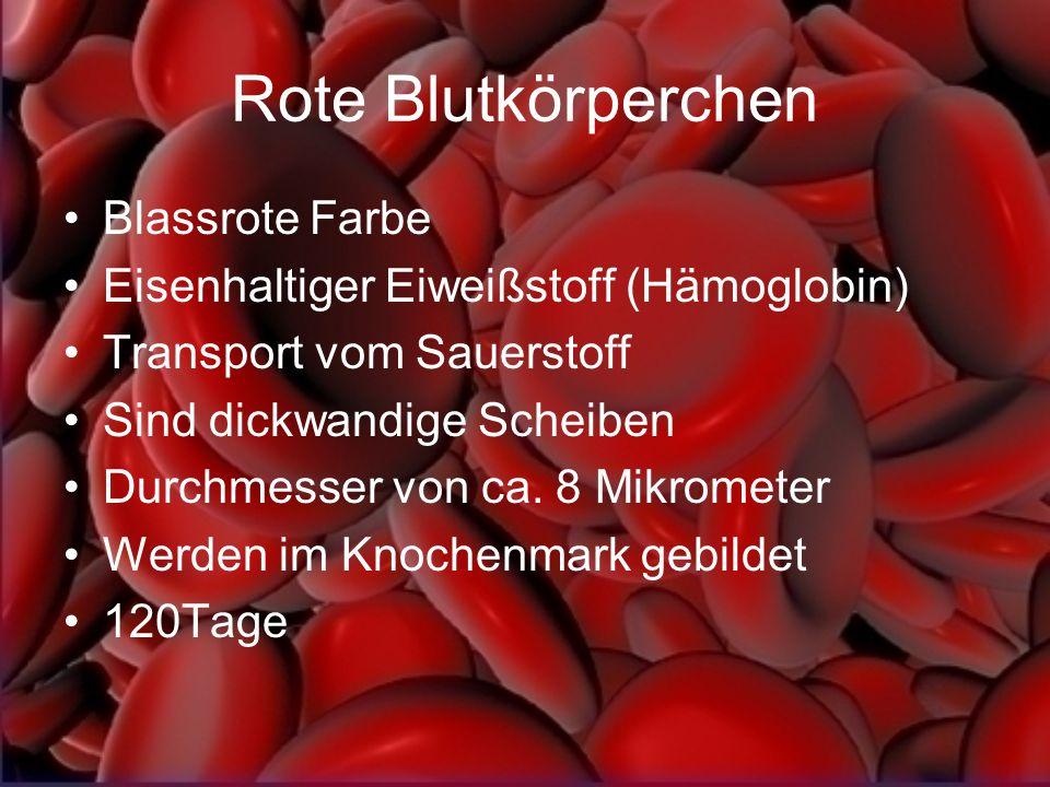 Rote Blutkörperchen Blassrote Farbe Eisenhaltiger Eiweißstoff (Hämoglobin) Transport vom Sauerstoff Sind dickwandige Scheiben Durchmesser von ca. 8 Mi