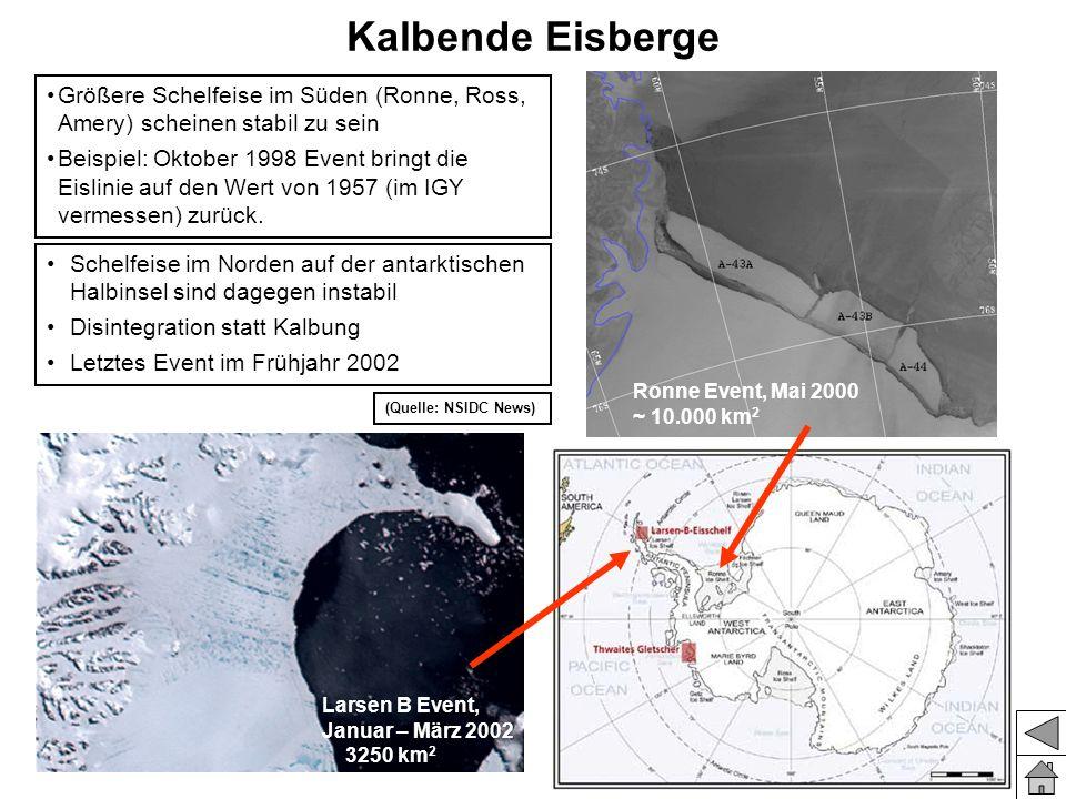 Kalbende Eisberge Schelfeise im Norden auf der antarktischen Halbinsel sind dagegen instabil Disintegration statt Kalbung Letztes Event im Frühjahr 20