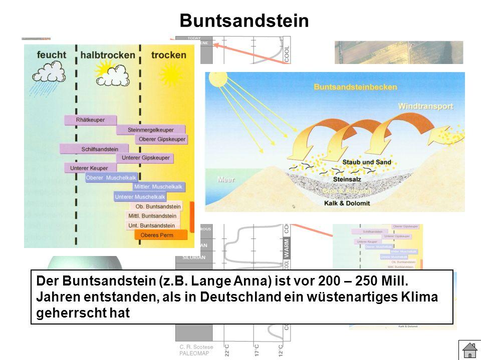 Buntsandstein Der Buntsandstein (z.B. Lange Anna) ist vor 200 – 250 Mill. Jahren entstanden, als in Deutschland ein wüstenartiges Klima geherrscht hat