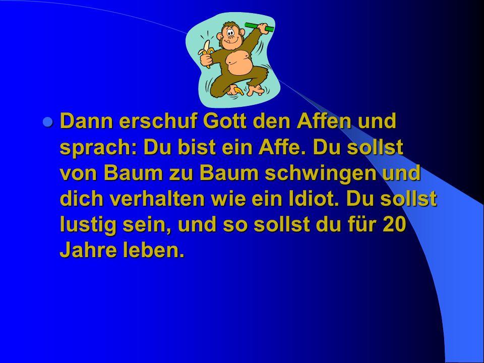 Dann erschuf Gott den Affen und sprach: Du bist ein Affe.