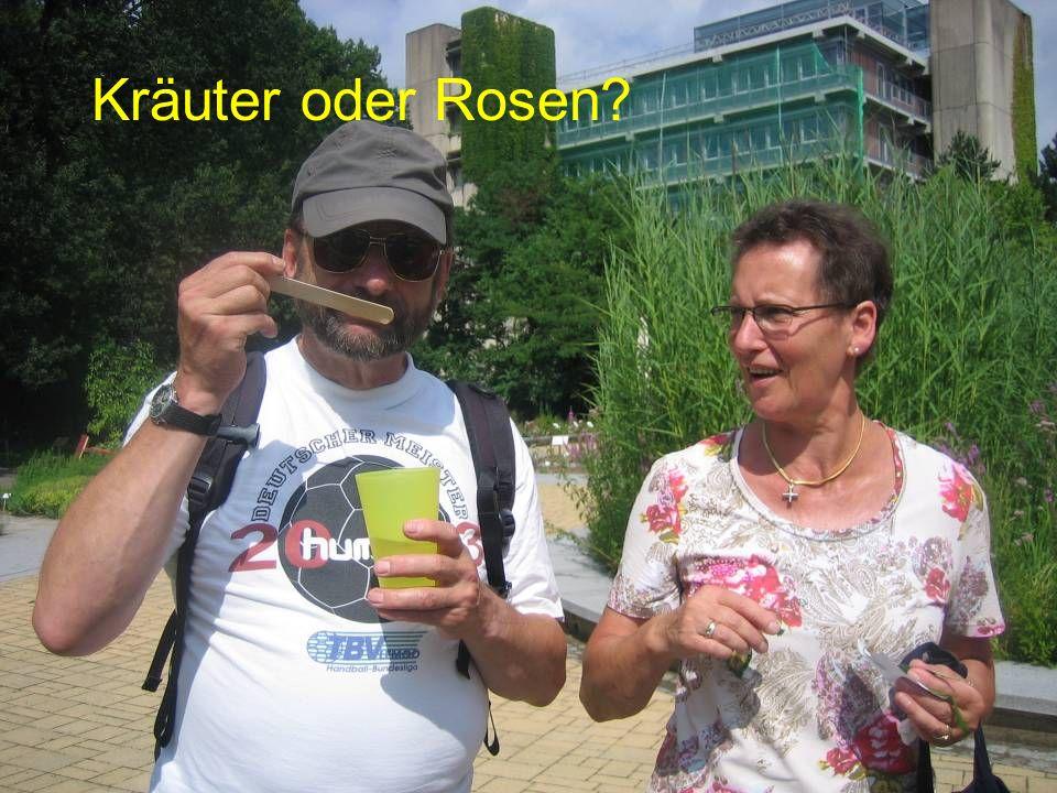 Kräuter oder Rosen?
