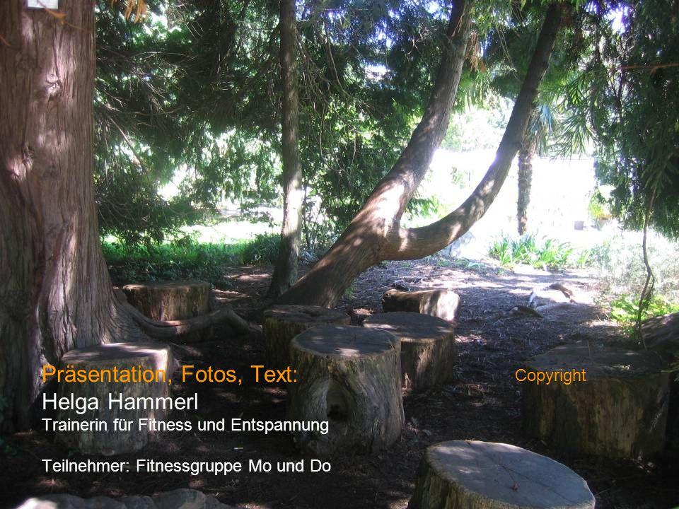 Präsentation, Fotos, Text: Helga Hammerl Trainerin für Fitness und Entspannung Teilnehmer: Fitnessgruppe Mo und Do Copyright