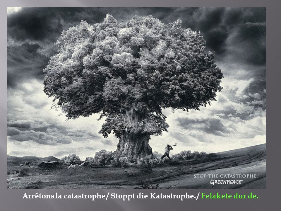 Arrêtons la catastrophe / Stoppt die Katastrophe. / Felakete dur de.