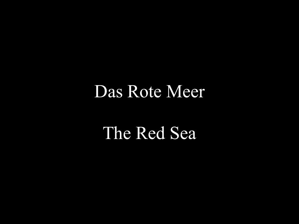 Das Rote Meer The Red Sea