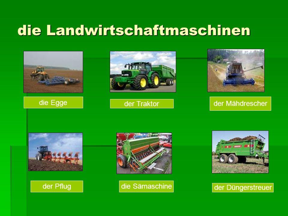 die Landwirtschaftmaschinen die Egge der Pflug der Düngerstreuer der Traktor der Mähdrescher die Sämaschine