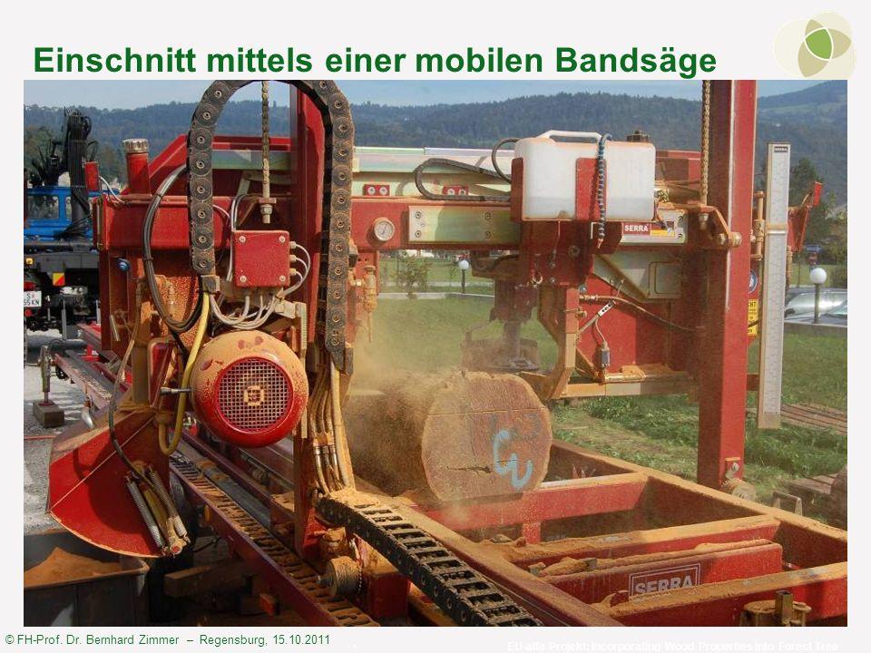 © FH-Prof. Dr. Bernhard Zimmer – Regensburg, 15.10.2011 Einschnitt mittels einer mobilen Bandsäge EU-alfa-Projekt: Incorporating Wood Properties into