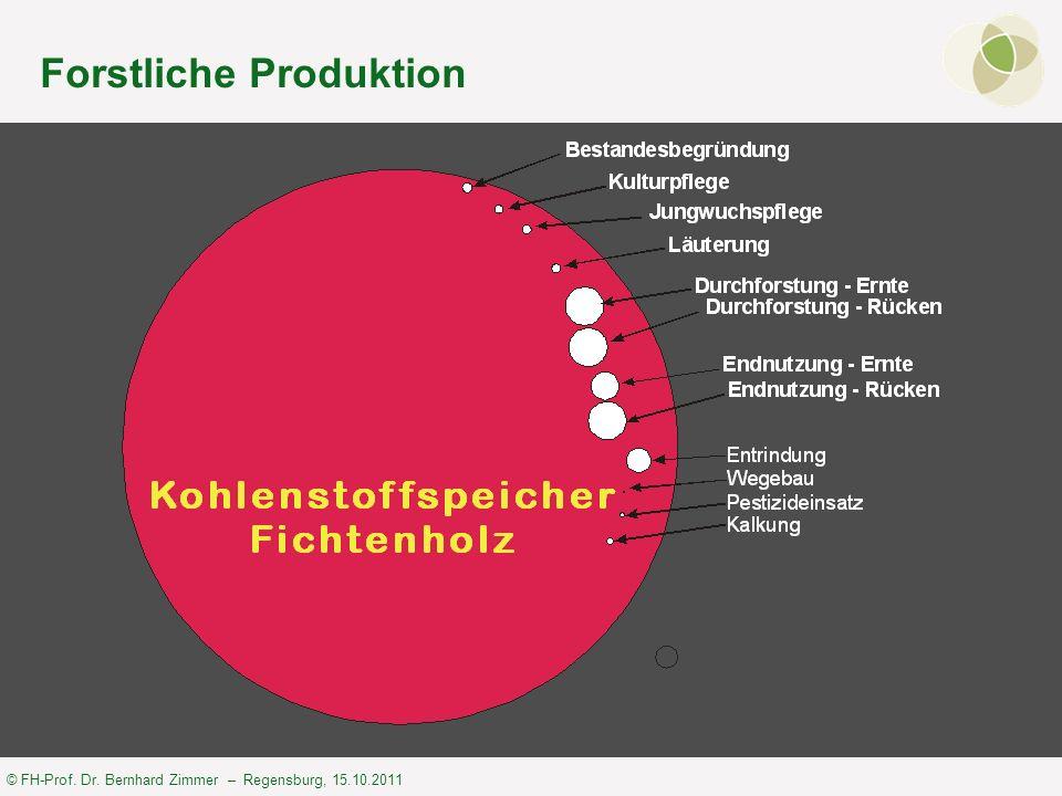 © FH-Prof. Dr. Bernhard Zimmer – Regensburg, 15.10.2011 Forstliche Produktion
