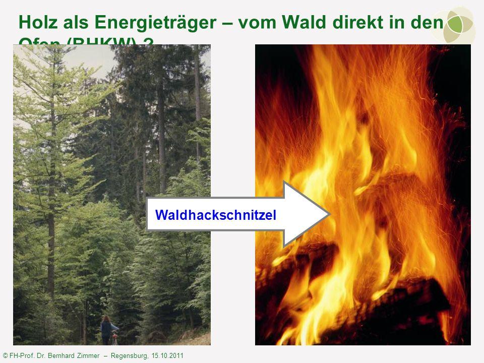 © FH-Prof. Dr. Bernhard Zimmer – Regensburg, 15.10.2011 Holz als Energieträger – vom Wald direkt in den Ofen (BHKW) ? Waldhackschnitzel