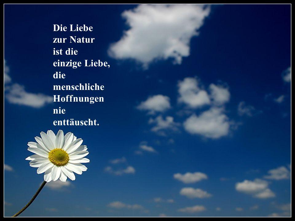 Die Liebe zur Natur ist die einzige Liebe, die menschliche Hoffnungen nie enttäuscht.