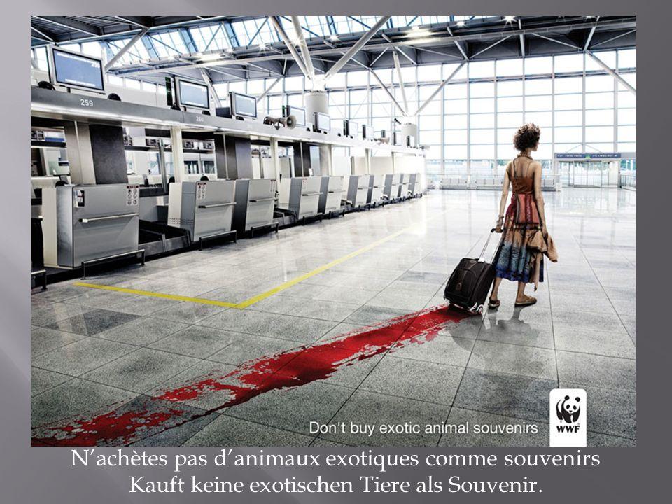 Nachètes pas danimaux exotiques comme souvenirs Kauft keine exotischen Tiere als Souvenir.