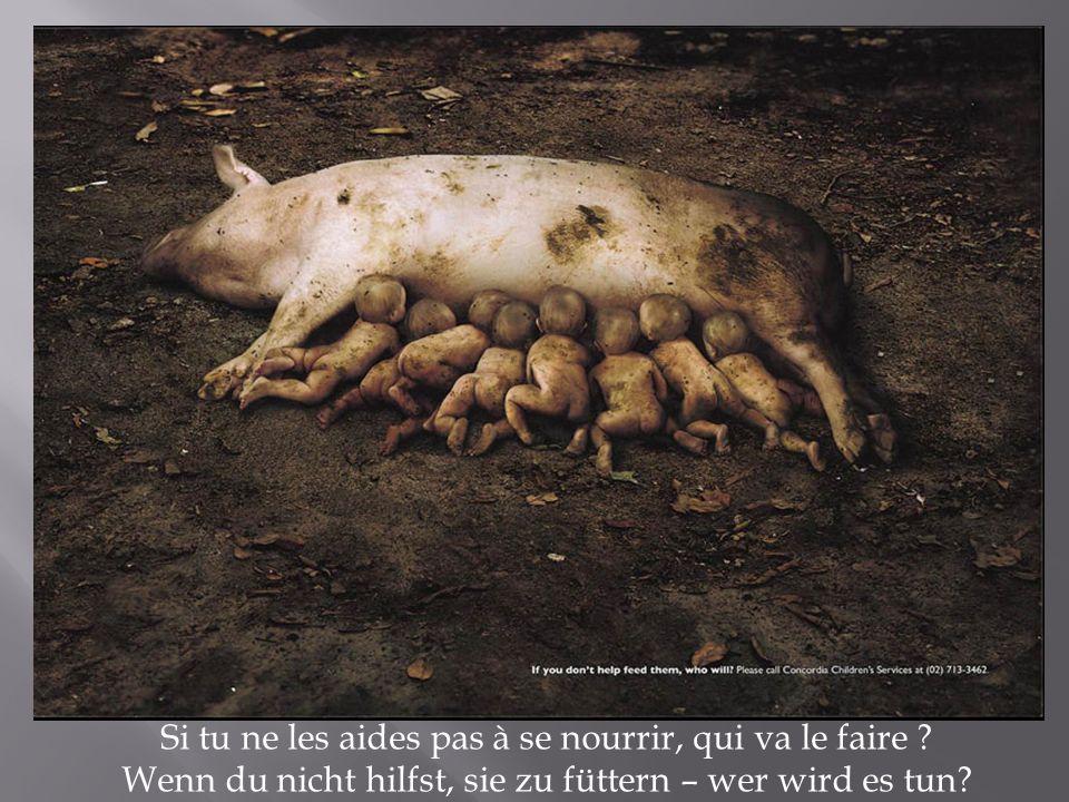 Si tu ne les aides pas à se nourrir, qui va le faire ? Wenn du nicht hilfst, sie zu füttern – wer wird es tun?