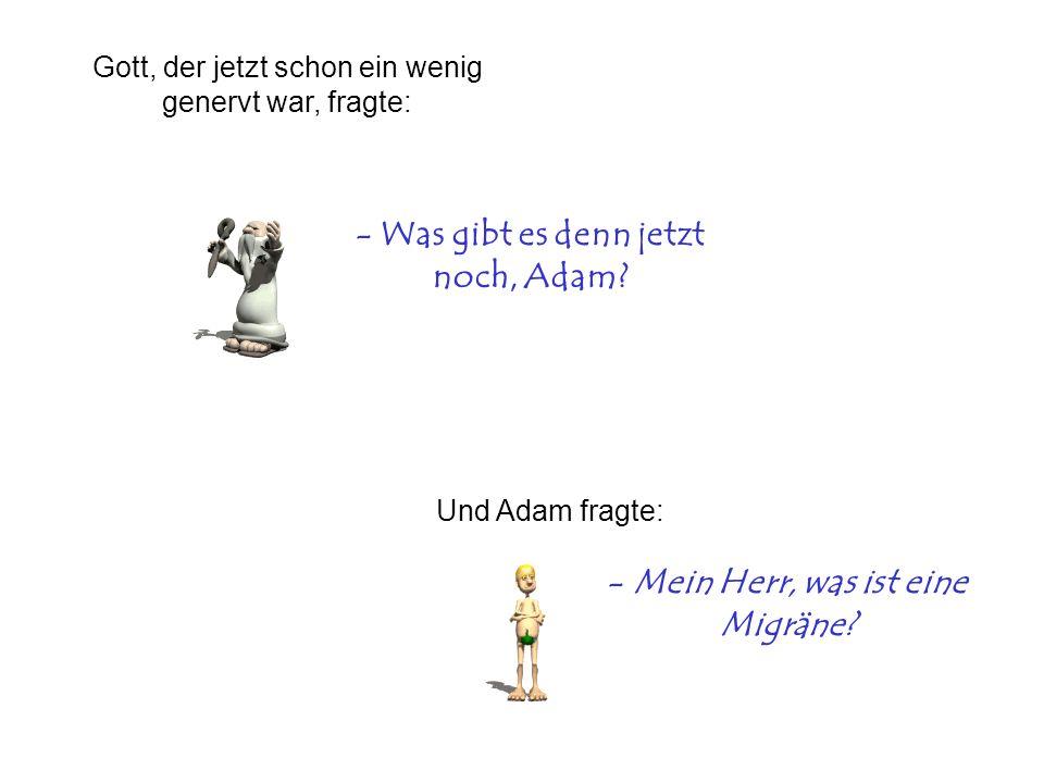 - Was gibt es denn jetzt noch, Adam? Und Adam fragte: - Mein Herr, was ist eine Migräne? Gott, der jetzt schon ein wenig genervt war, fragte: