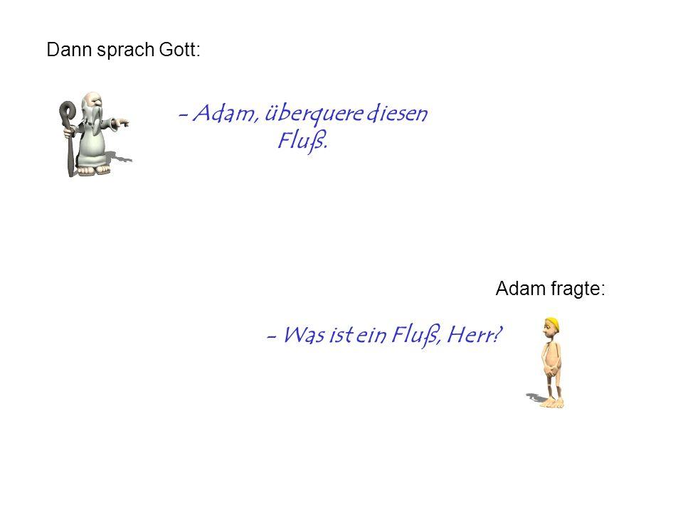 - Adam, überquere diesen Fluß. Dann sprach Gott: Adam fragte: - Was ist ein Fluß, Herr?