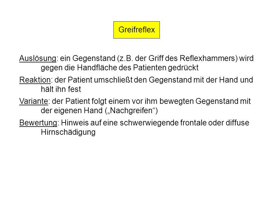 Greifreflex Auslösung: ein Gegenstand (z.B. der Griff des Reflexhammers) wird gegen die Handfläche des Patienten gedrückt Reaktion: der Patient umschl