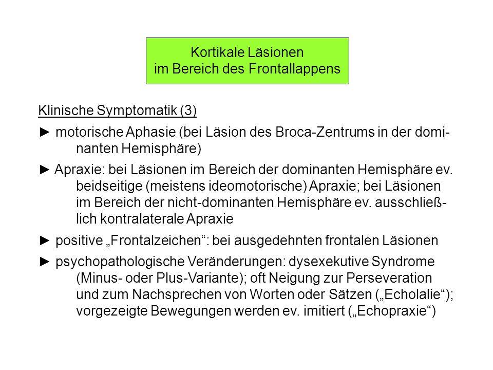 Kortikale Läsionen im Bereich des Frontallappens Klinische Symptomatik (3) motorische Aphasie (bei Läsion des Broca-Zentrums in der domi- nanten Hemis