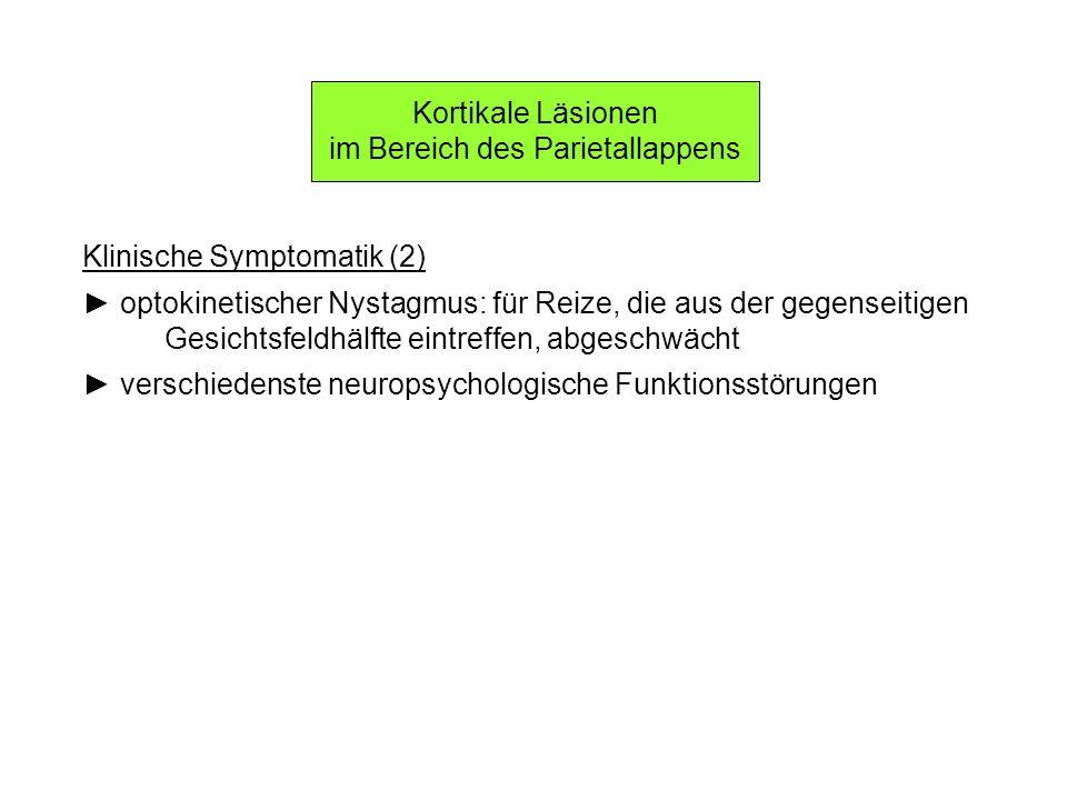 Kortikale Läsionen im Bereich des Parietallappens Klinische Symptomatik (2) optokinetischer Nystagmus: für Reize, die aus der gegenseitigen Gesichtsfe
