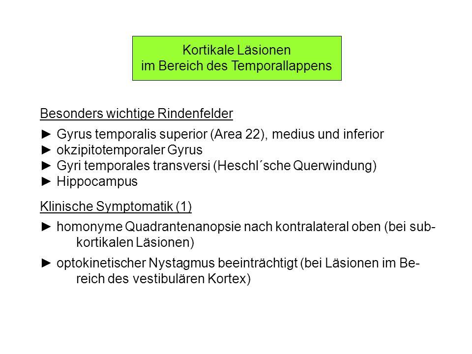 Kortikale Läsionen im Bereich des Temporallappens Besonders wichtige Rindenfelder Gyrus temporalis superior (Area 22), medius und inferior okzipitotem