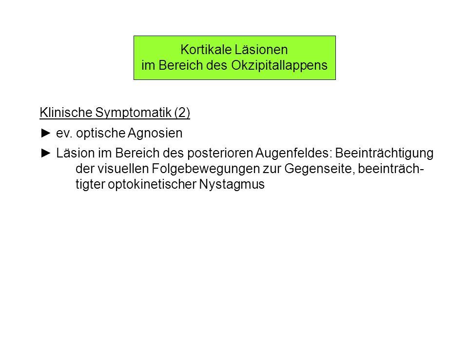 Kortikale Läsionen im Bereich des Okzipitallappens Klinische Symptomatik (2) ev. optische Agnosien Läsion im Bereich des posterioren Augenfeldes: Beei