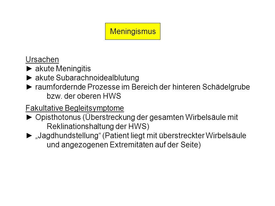 Meningismus Ursachen akute Meningitis akute Subarachnoidealblutung raumfordernde Prozesse im Bereich der hinteren Schädelgrube bzw. der oberen HWS Fak