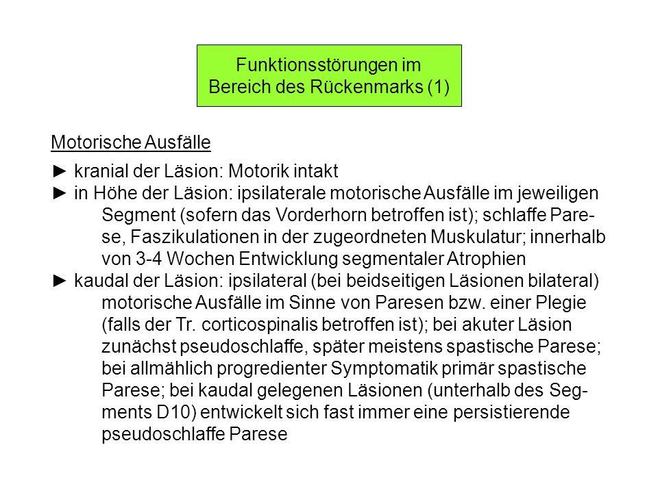 Funktionsstörungen im Bereich des Rückenmarks (1) Motorische Ausfälle kranial der Läsion: Motorik intakt in Höhe der Läsion: ipsilaterale motorische A