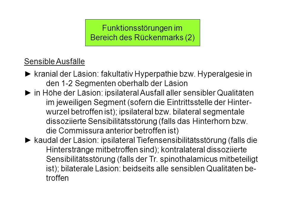 Funktionsstörungen im Bereich des Rückenmarks (2) Sensible Ausfälle kranial der Läsion: fakultativ Hyperpathie bzw. Hyperalgesie in den 1-2 Segmenten