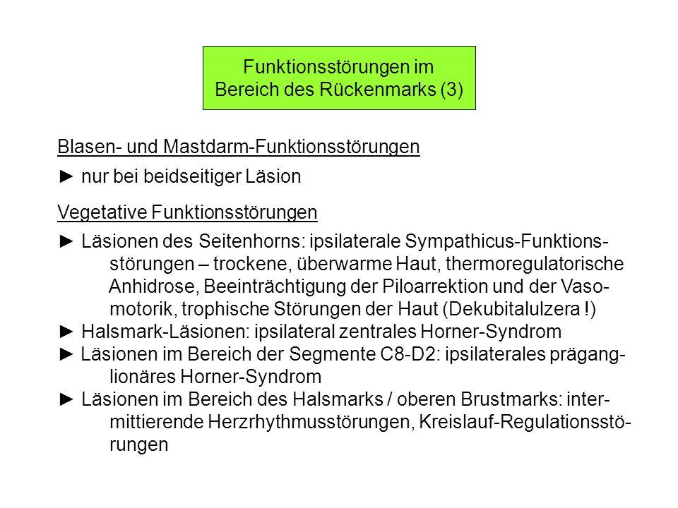 Funktionsstörungen im Bereich des Rückenmarks (3) Blasen- und Mastdarm-Funktionsstörungen nur bei beidseitiger Läsion Vegetative Funktionsstörungen Lä