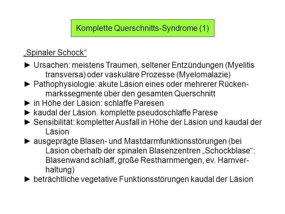 Komplette Querschnitts-Syndrome (1) Spinaler Schock Ursachen: meistens Traumen, seltener Entzündungen (Myelitis transversa) oder vaskuläre Prozesse (M