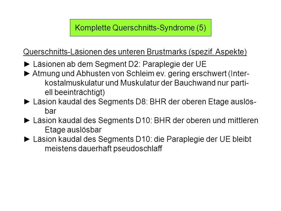 Komplette Querschnitts-Syndrome (5) Querschnitts-Läsionen des unteren Brustmarks (spezif. Aspekte) Läsionen ab dem Segment D2: Paraplegie der UE Atmun