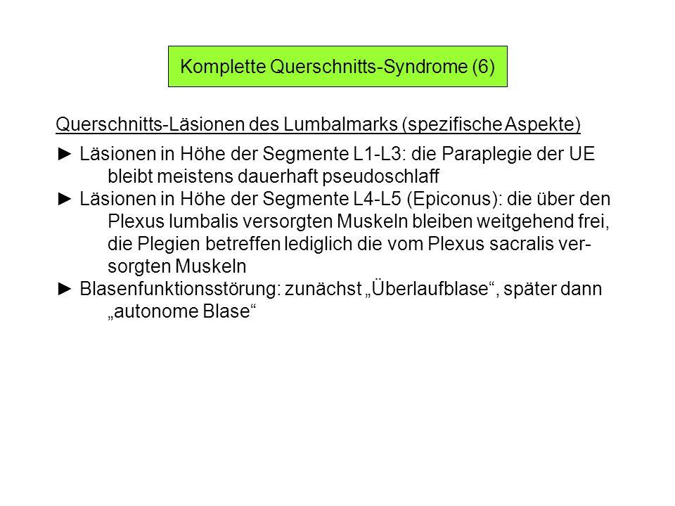Komplette Querschnitts-Syndrome (6) Querschnitts-Läsionen des Lumbalmarks (spezifische Aspekte) Läsionen in Höhe der Segmente L1-L3: die Paraplegie de