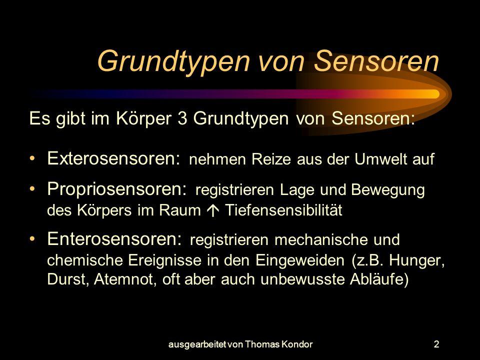 ausgearbeitet von Thomas Kondor2 Grundtypen von Sensoren Es gibt im Körper 3 Grundtypen von Sensoren: Exterosensoren: nehmen Reize aus der Umwelt auf