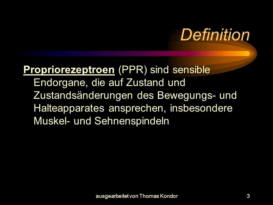 ausgearbeitet von Thomas Kondor4 Verantwortung der PPR Propriosensoren (-rezeptoren) dienen allgemein der Steuerung der Körperhaltung und Körperbewegung, sowie der Orientierung ohne richtende Außenreize.