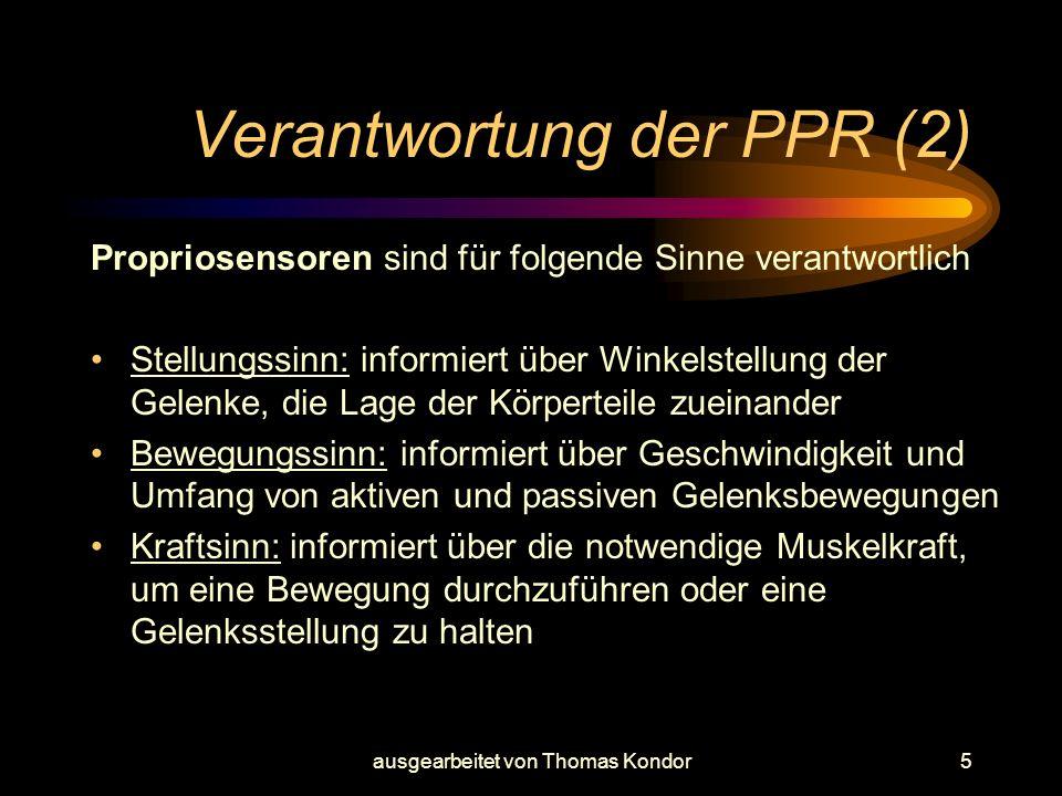 ausgearbeitet von Thomas Kondor5 Verantwortung der PPR (2) Propriosensoren sind für folgende Sinne verantwortlich Stellungssinn: informiert über Winke