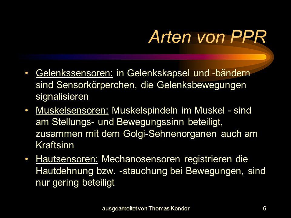 ausgearbeitet von Thomas Kondor7 Warum PPR trainieren Früher waren die PPR durch Unebenheiten z.B.