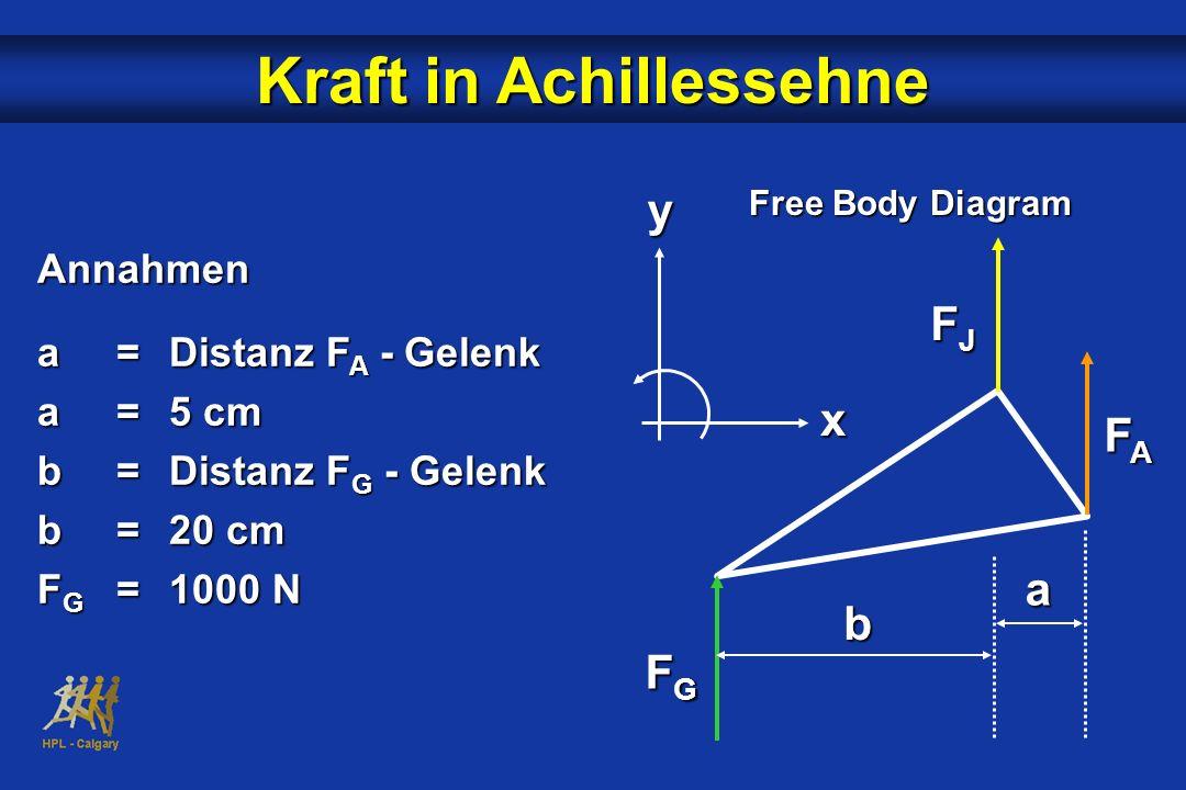 Free Body Diagram yx FJFJFJFJ FAFAFAFA FGFGFGFG b a Kraft in Achillessehne Annahmen a=Distanz F A - Gelenk a=5 cm b=Distanz F G - Gelenk b=20 cm F G =