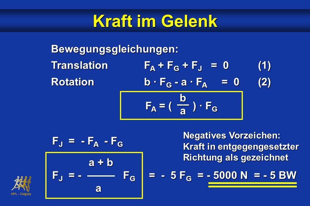 Kraft im Gelenk Bewegungsgleichungen: TranslationF A + F G + F J = 0(1) Rotationb · F G - a · F A = 0(2) F A = ( ) · F G b –– a Negatives Vorzeichen: